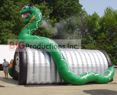 snake mascot tunnel
